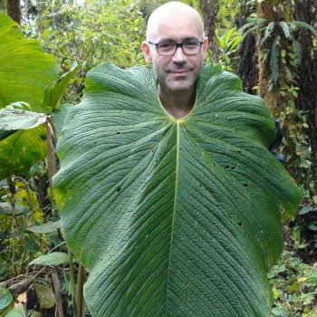 With a giant leaf, Quito, Ecuador