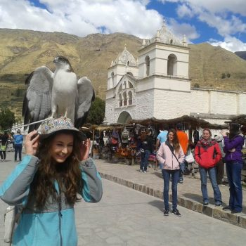 Hawk on top of a student, Cusco; Peru