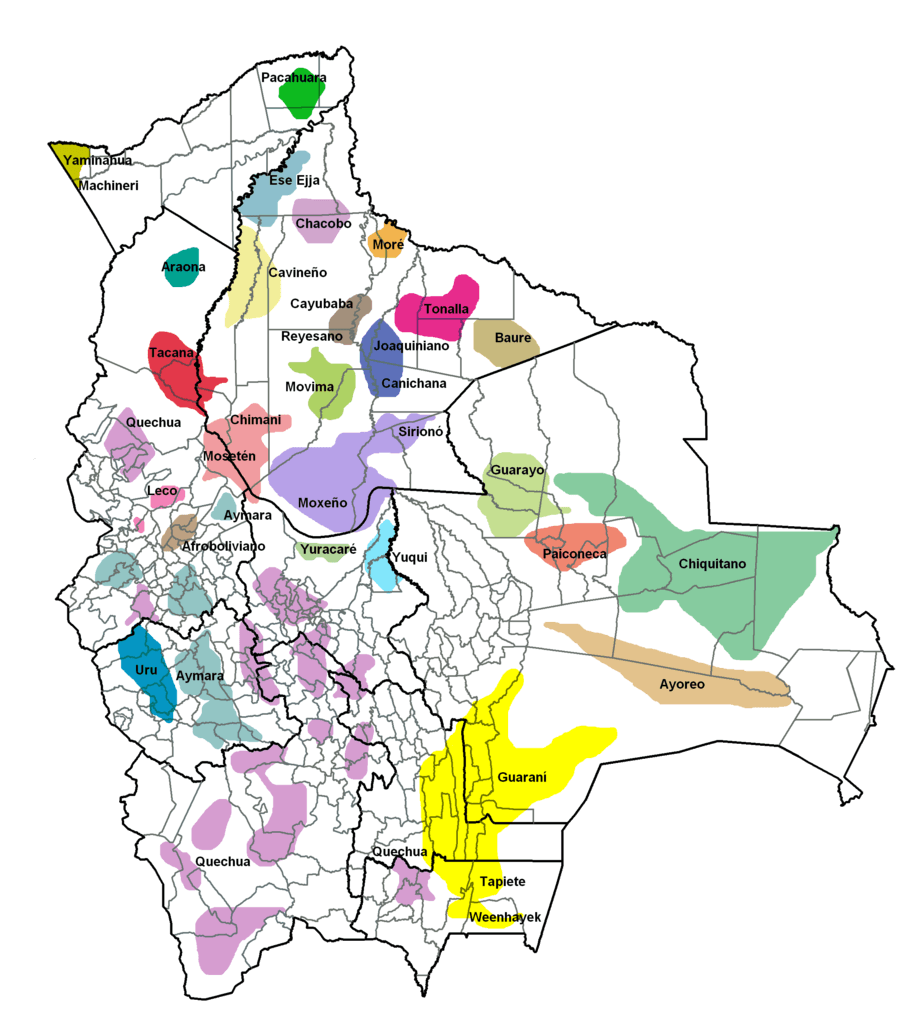 Indigenous languages in Bolivia