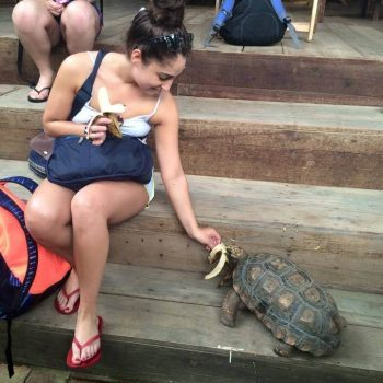 Student giving a banana to a turtle, Quito, Ecuador