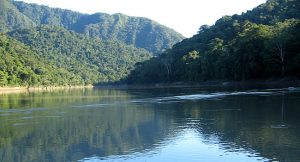 Madidi National Park - Bolivia