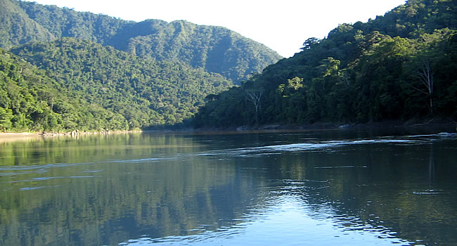 Madidi National Park, Bolivia