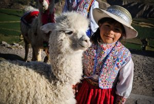 Travelling through South America